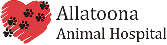 Allatoona Animal Hospital
